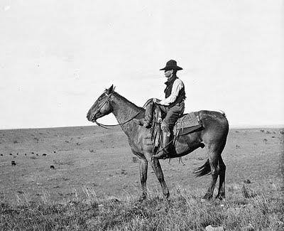 cowboy 456132